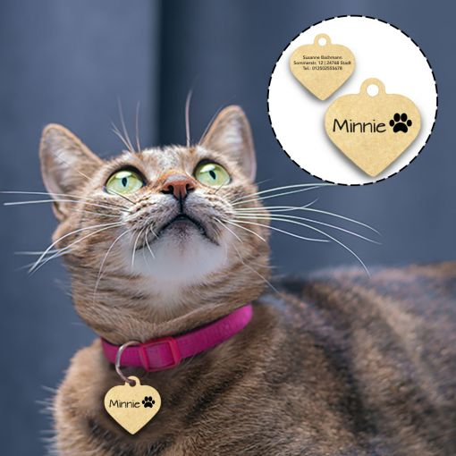 Katzenmarke in Herzform   Hundemarke